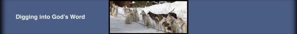 blogsleddogs
