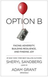 OptionB.png